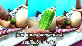 คู่ไทย เอามะระ แหย่รูหอยแฟน ร้องโอ๊ยเจ็บ เสียงไทย